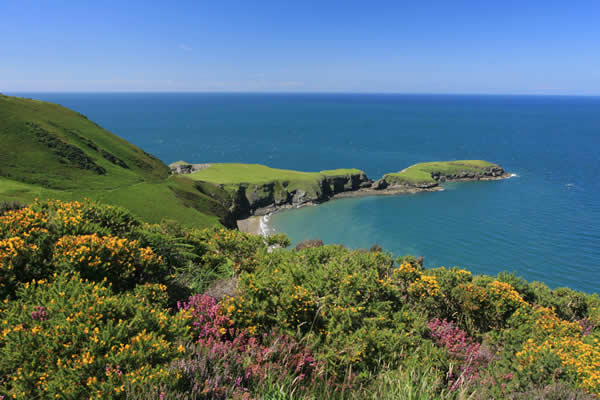 Attractions, things to do in and around Ceredigion in Wales